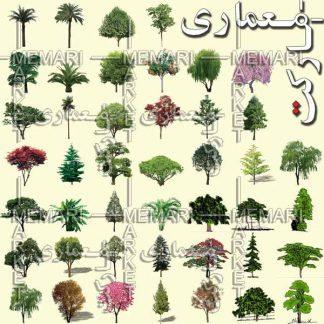نمای درختان و گیاهان برای راندو و پرزانته با فرمت PSD